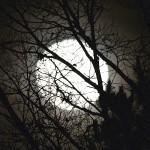 Lunar Lore